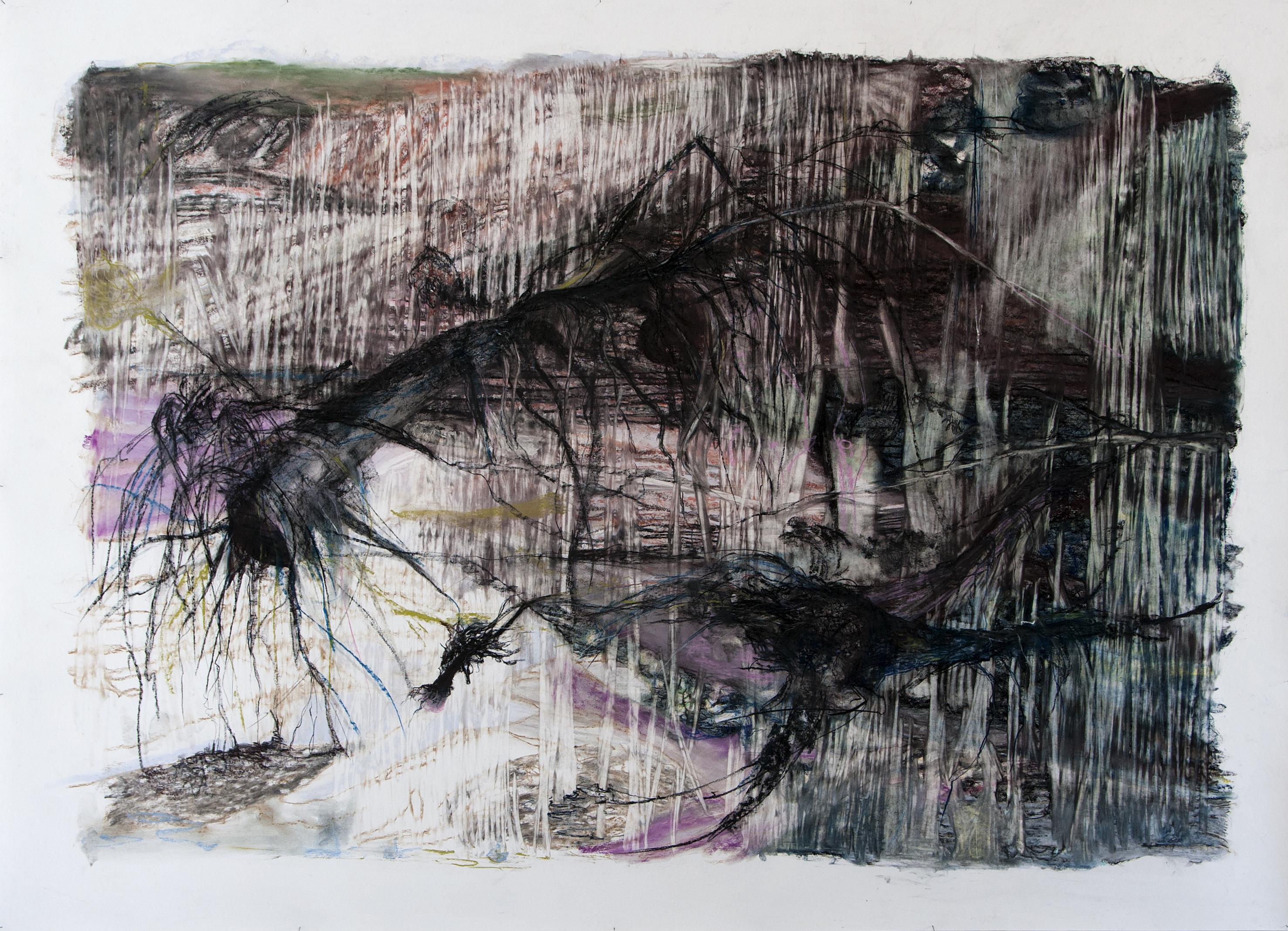 Kunstenaarsgesprek met Emmy Bergsma en bezoek Ecokathedraal op 14 december
